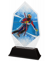 Whistler Ski Slalom Trophy