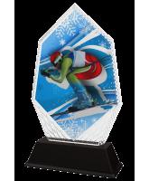 Whistler Skier Trophy
