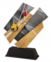 Paris Male Volleyball Trophy