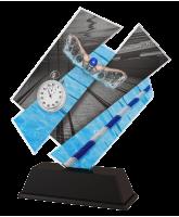 Paris Swimming Trophy