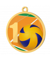 Volleyball 1st Place Printed Gold Medal
