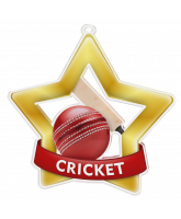 Cricket Mini Star Gold Medal