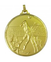 Diamond Edged Volleyball Gold Medal