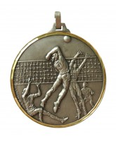 Diamond Edged Volleyball Silver Medal