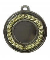 Gilt Laurel Logo Insert Silver Medal