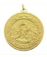 Laurel Mountain Bike Gold Medal