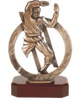 Antwerp Pewter Karate Trophy
