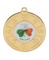 Eire Logo Insert Gold Medal 50mm