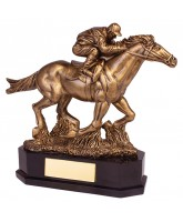 Aintree Deluxe Horse Riding Trophy