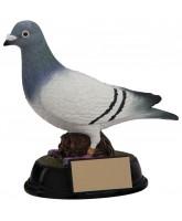 Elite Pigeon Trophy