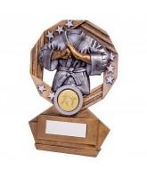 Enigma Martial Arts Trophy