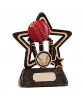 Little Star Cricket Trophy