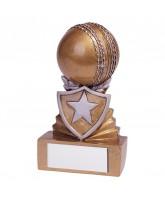 Mini Shield Cricket Trophy