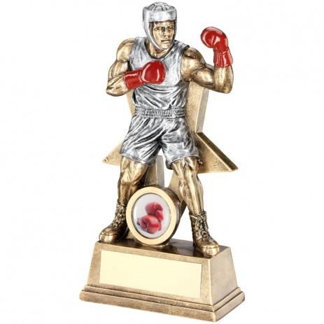 Gold Star Boxer Trophy