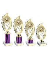 Purple Star Logo Insert Trophy