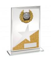 Starlight Jade Crystal Logo Insert Award