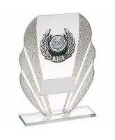 Tidal Jade Crystal Logo Insert Award