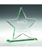 Virgo Crystal Star Award
