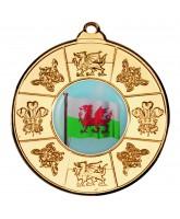 Welsh Logo Insert Gold Medal